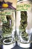 "Browse MMJ <b>Centers</b> Pictures"" title=""Browse MMJ <b>Centers</b> Pictures"" /></a> </p> <p style="