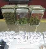 "Browse MMJ <b>Centers</b>"" title=""Browse MMJ <b>Centers</b>"" /></a> </p> <p style="